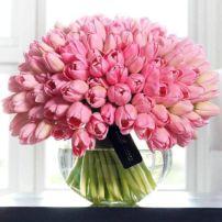 tulipan_5